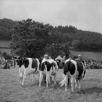 Eglwys-bach Agricultural Show 1963]