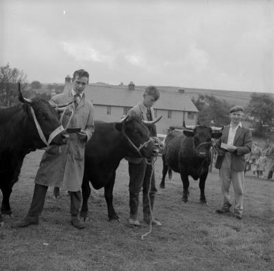 Nebo Agricultural Show, Caernarfonshire 1963