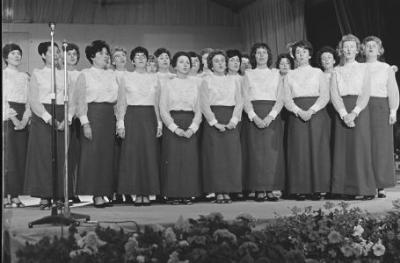 Eisteddfod Genedlaethol Frenhinol y Barri, 1968