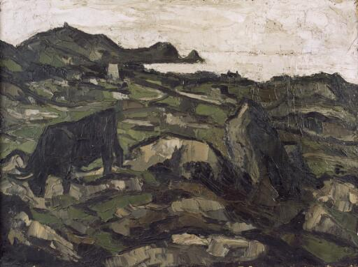 Welsh Black on rocky outcrop above the coast