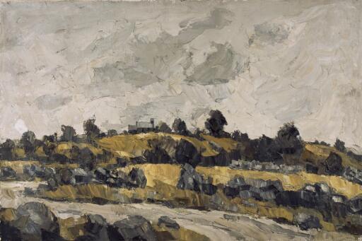 Yellow fields under a grey sky