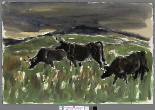 Three cows at sunset