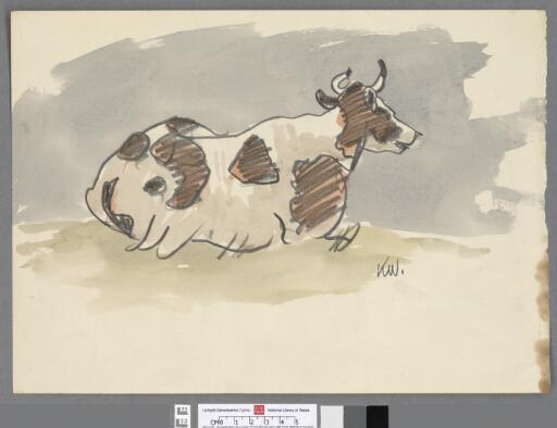 Cow lying in a field