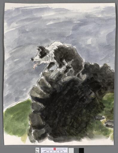 Sheepdog on a wall