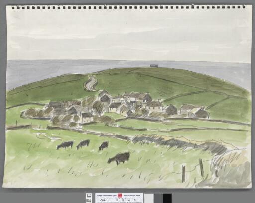 Welsh blacks grazing near a village