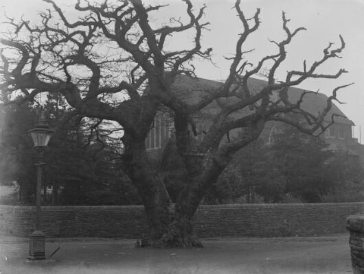 Eglwys Caerffili