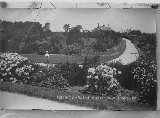 Gerddi Botaneg, Parc y Rhath, Caerdydd