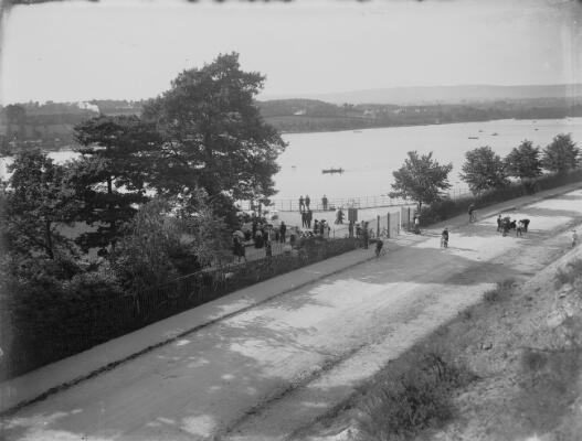 The Lake, Cardiff