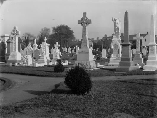 The New Cemetery, Cardiff