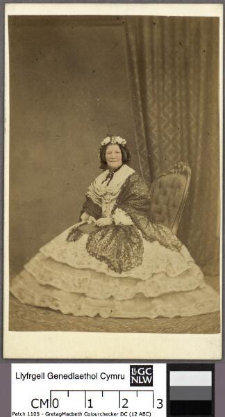 Maria Jane Williams of Aberpergwm and Ynyslas ...