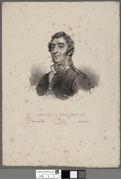 Le Duc de Wellington
