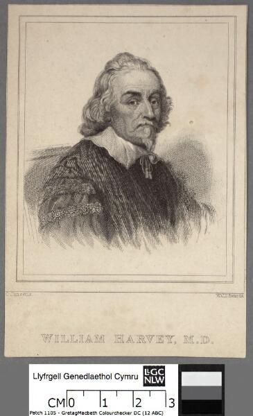 William Harvey, M.D