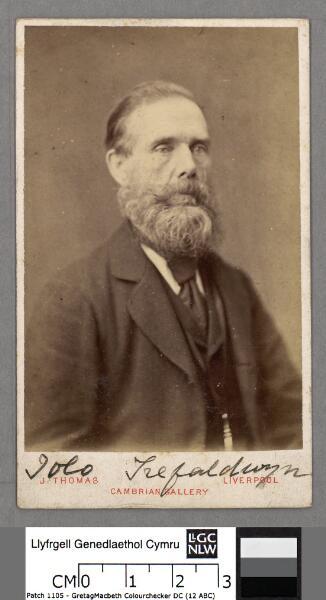 Iolo Trefaldwyn