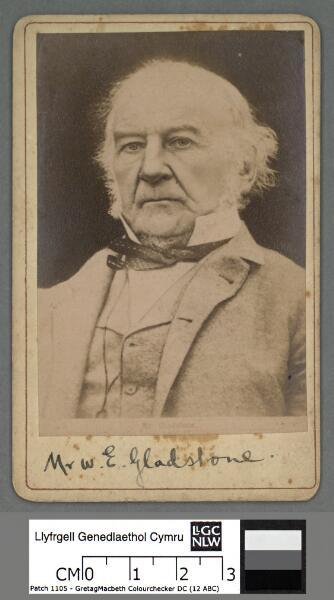 Mr. W. E. Gladstone