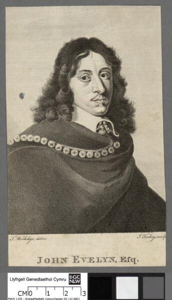 John Evelyn, Esq