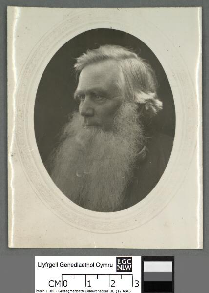 Y Parch. Robert Ellis, (Cynddelw)