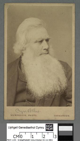 Robert Ellis, 'Cynddelw'