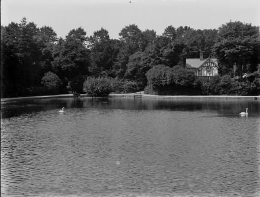 The Lake, Brynmill Park, Swansea