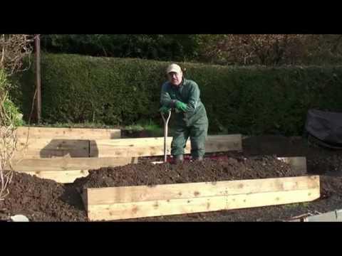 Raised beds gardening