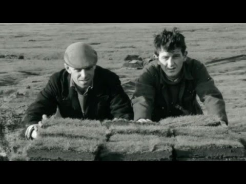 The Story of Cutting Turf  on the Beach in...