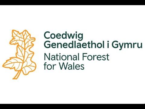 Fy Nghariad at Goetiroedd - gyda Dafydd Davies...