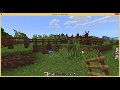 Evan Hicks - Cystadleuaeth Minecraft Eich...