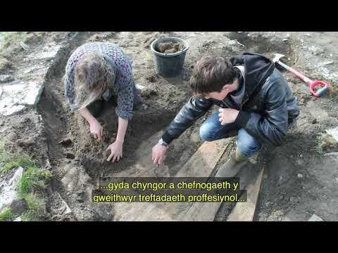 Cyd-gynghyrchu - Treftadaeth Ddisylw