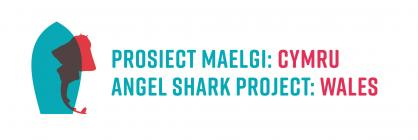 Angel Shark Project Wales Collection