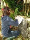 Eglwys Ysbyty Cynfyn Church Graveyard Survey:...