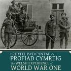 WW1 items of Morris Hughes contributed by Mrs...