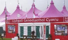 The National Library of Wales at the Eisteddfod