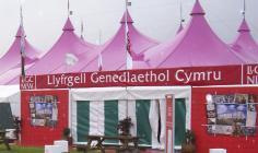 Llyfrgell Genedlaethol Cymru a'r Eisteddfod