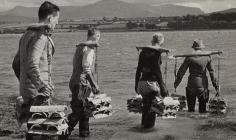 Cultivating Oysters in Conwy