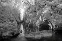 The Fairy Glen gorge at Betws-y-Coed, North Wales