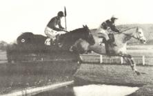 Water jump, Ely racecourse