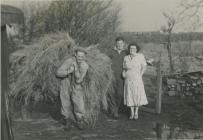 Glan-yr-Ynys Farm, Machynys, Llanelli