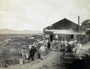 Llanfair Slate Yard c1905