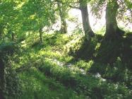 Offa's Dyke, Ruabon