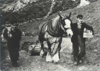 Up the corkscrew hill from Nant Gwrtheyrn c1935