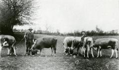 C. E. G. Morgan Richardson of Rhos-y-gilwen