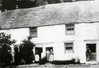 Pantdŵr, Llechryd, c. 1900