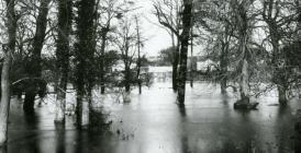 Flooding on the River Teifi, Lechryd, c. 1910