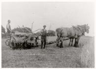 Hay Cutting. Bagillt, 1921