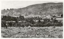Haymaking, Caergwrle c1922