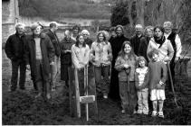 Planting the Millenium Yew