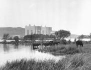 Atomfa Trawsfynydd, 1965