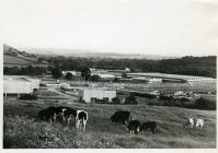 Llantrisant Industrial Estate