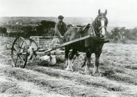 James Evans using a side-rake at Castle Malgwyn...