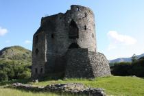 Dolbadarn Castle, 2008