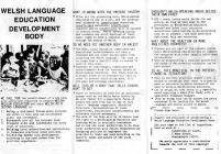 Call for Welsh-Medium Education
